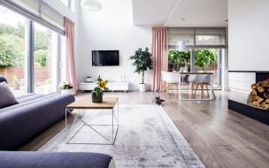 интерьер, гостиная, ковер, диван, дрова