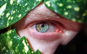 разное, глаза, глаз, макро