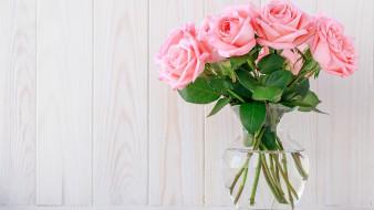 цветы, розы, ваза, розовый, букет