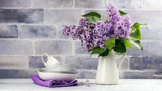 обои для рабочего стола 2560x1440 цветы, сирень, кувшин, букет
