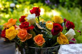 цветы, розы, бутоны, букет, разноцветный