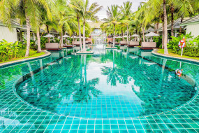интерьер, бассейны,  открытые площадки, пальмы, бассейн