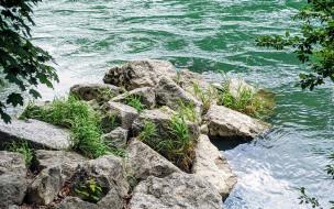вода, камни, река, трава