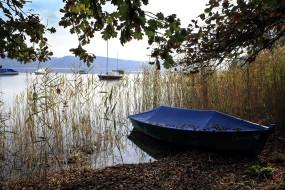 корабли, лодки,  шлюпки, река, лодка, камыши