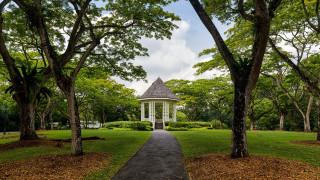 природа, парк, деревья, аллея, беседка