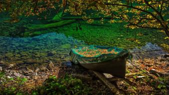 корабли, лодки,  шлюпки, осень, лодка, листья