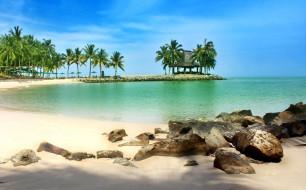 природа, тропики, пальмы, лагуна, пляж