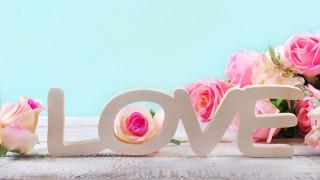 праздничные, день святого валентина,  сердечки,  любовь, розы, надпись