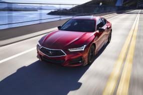 acura tlx advance 2020, автомобили, acura, новая, модель, tlx, advance, 2020, красный, седан