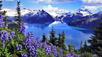 garibaldi provincial park, canada, природа, реки, озера, garibaldi, provincial, park