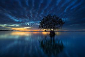 природа, восходы, закаты, закат, озеро, дерево