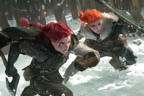 девушки, щит, топор, лес, снег, зима, охота