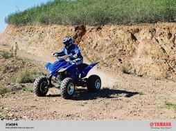 yfm350r, мотоциклы, квадроциклы