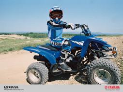yfm80, мотоциклы, квадроциклы