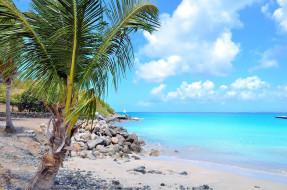 мартиника, карибы, природа, тропики
