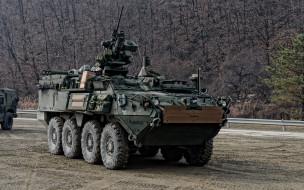 техника, военная техника, m1131, stryker, машина, огневой, поддержки, бронемашина, fsv, армия, сша