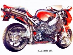honda, nr, 750, мотоциклы