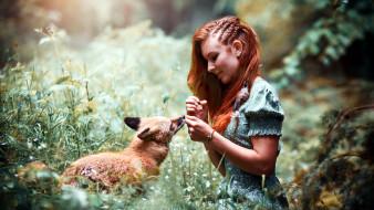 девушки, - рыжеволосые и разноцветные, рыженькая, причёска, лисица