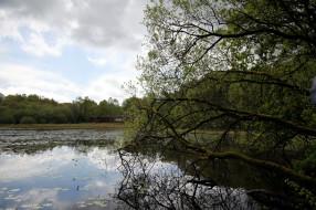 бретань, франция, природа, реки, озера