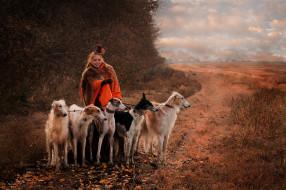 девушки, - рыжеволосые и разноцветные, собаки, борзые, осень, поля, роща, шляпа, рыжая