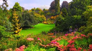природа, парк, лужайка, деревья, цветы