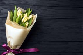 цветы, тюльпаны, букет, бутоны, лента, бант