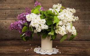 цветы, сирень, ваза, букет, салфетка