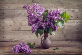 цветы, сирень, кувшин, букет