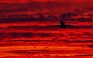 закат, самолет, небо, гражданская авиация