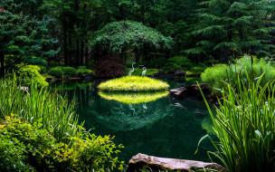 природа, парк, пруд, камыши, деревья, фигурки