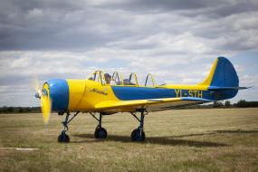ЯК- 52, самолёт, поле