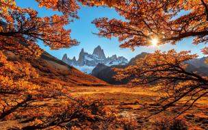 обои для рабочего стола 1920x1200 природа, пейзажи, осень, деревья, пейзаж, горы
