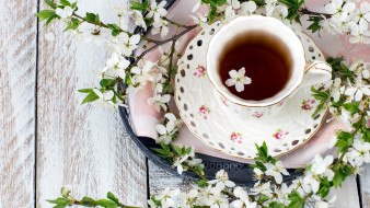 еда, напитки,  чай, цветущие, ветки, чай, чашка