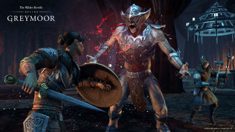 The Elder Scrolls Online, игра, ролевая, онлайн