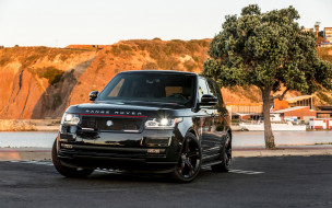 автомобили, range rover, strut