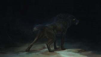 фэнтези, оборотни, волк, оборотень, клыки