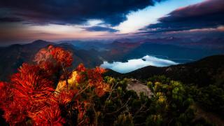 природа, пейзажи, баварские, альпы
