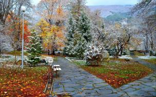 природа, парк, аллеи, деревья, листья, иней