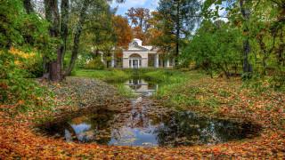 природа, парк, павловский, санкт-петербург