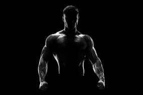 спорт, body building, торс, силуэт, мужчина, фитнес, мотивация