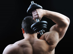 обои для рабочего стола 2880x2142 спорт, body building, спина, плечи, мужчина, мышцы, мышца, бодибилдер, гантели, бодибилдинг