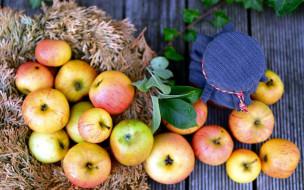 обои для рабочего стола 1920x1200 еда, яблоки, банка, урожай
