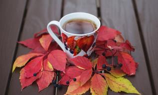 еда, напитки,  чай, листья, чашка, чай, осень