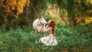 девушки, - рыжеволосые и разноцветные, поляна, трава, рыжеволосая, девушка, олень