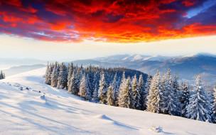природа, горы, тучи, снег, лес