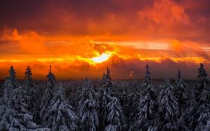 природа, восходы, закаты, закат, вечер, зима, небо, тучи, солнце, огненный, лучи, деревья, лес, пейзаж, красота