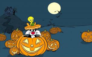 мультфильмы, looney tunes, хэллоуин, тыквы, твитти, кот, сельвестр