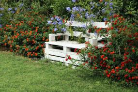 кусты, цветущие