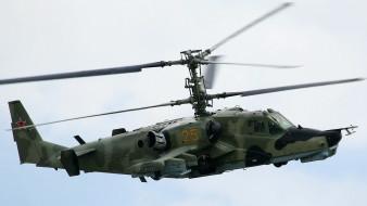 авиация, вертолёты, аллигатор, камов, ввс, россии