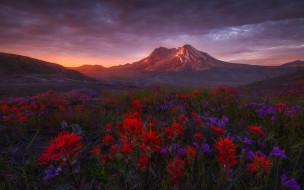 природа, пейзажи, пейзаж, гора, цветы, вечер, небо, облака, красота